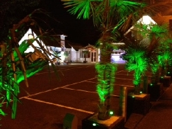 Road view at night_2